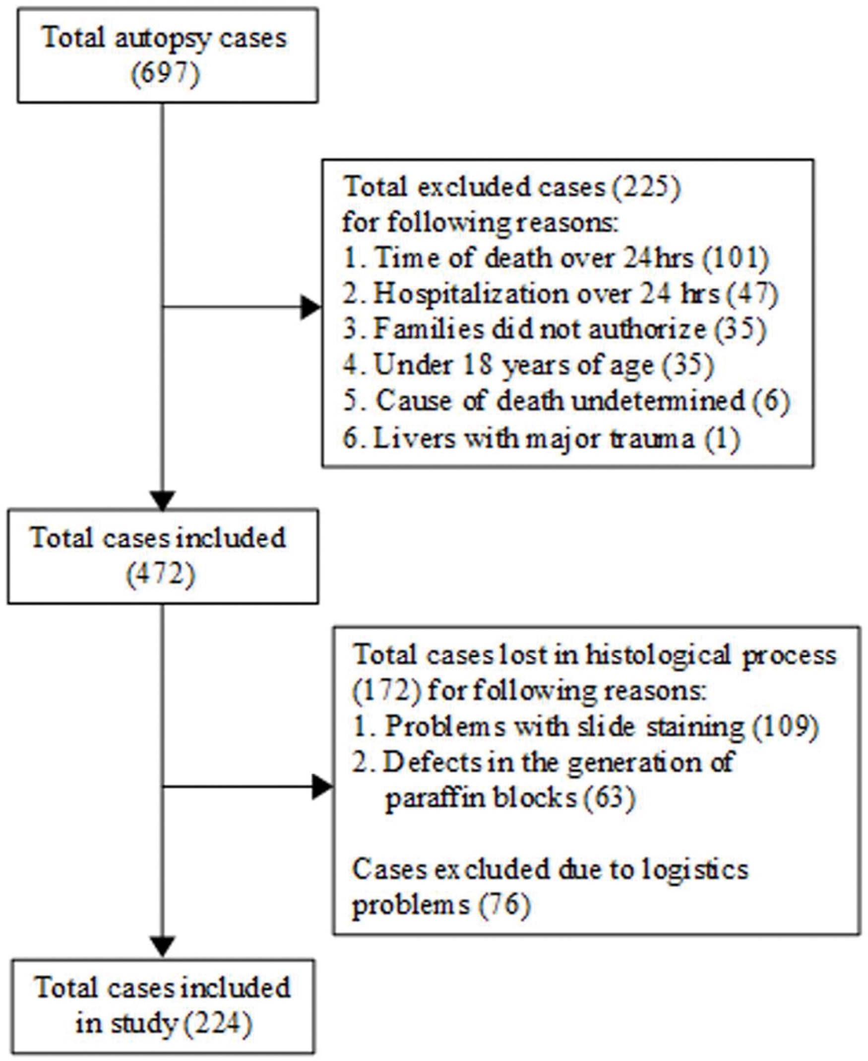 Flowchart detailing the inclusion and exclusion of cases.