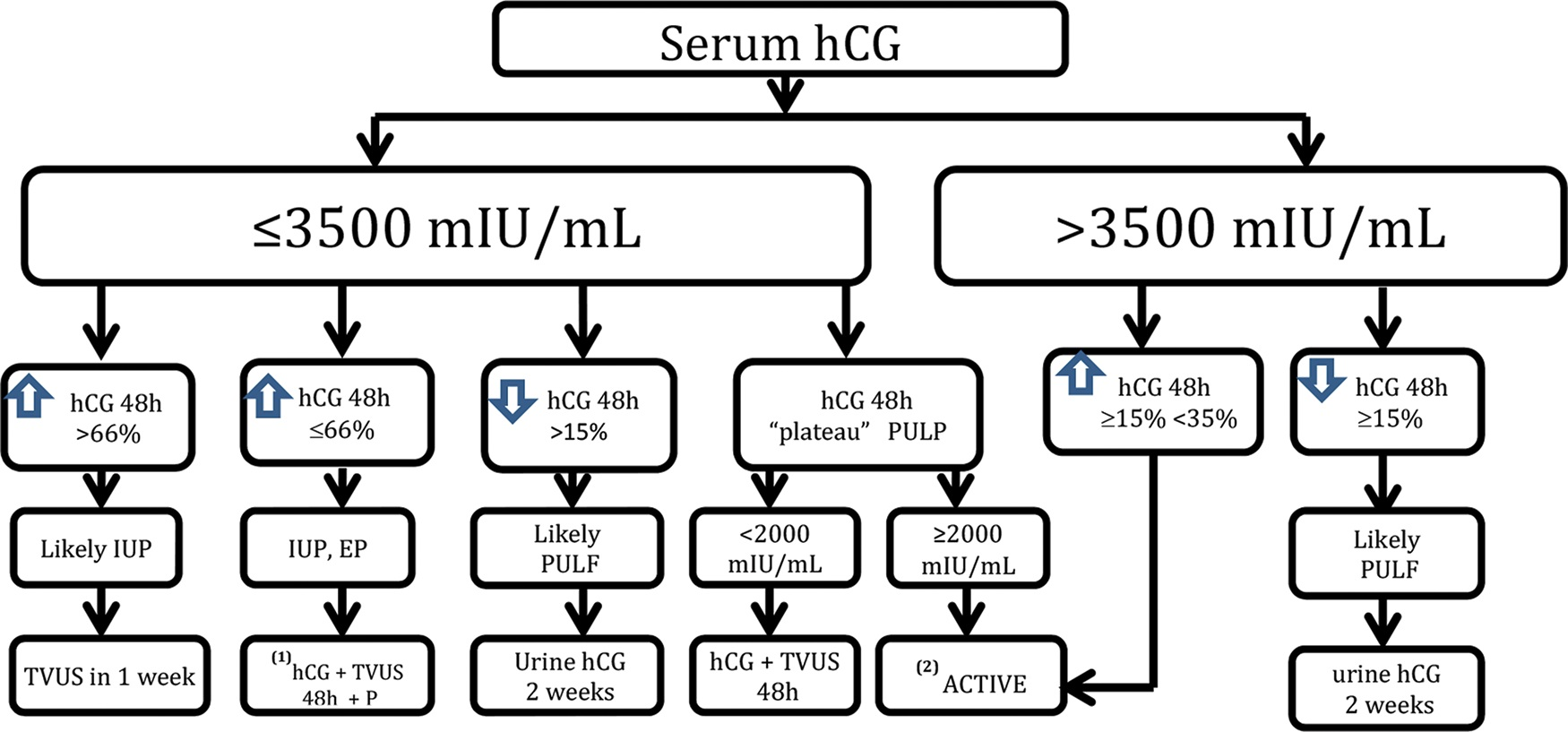The algorithm employed by the Obstetric Clinic of the HCFMUSP in the follow-up of PUL cases. * Expectant: hCG up to a maximum of 3,500 mIU/mL (serum hCG+TVUS). **Active: MVA (hCG at 24 hours/hCG at 0 hours). Increase or decrease in hCG <15% 24 hours after MVA⇒MTX 50 mg/m2. Failure after one cycle of MTX, computed tomography, or magnetic resonance imaging of the chest, abdomen, and pelvis due to the possibility of chorionic gonadotropin-producing tumor.