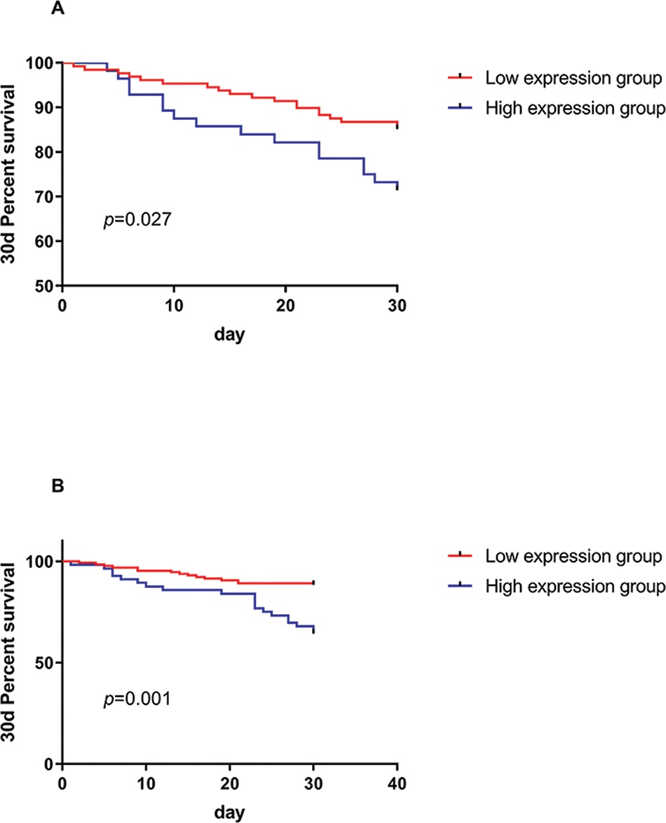 The relationship between the expression of miR-21 and NLR and the survival of patients at 30 days. A. The survival rate of patients was found to be significantly lower in the miR-21 high-expression group than in the low-expression group, and there was a significant difference between the high-expression group and the low-expression group. B. The survival rate of the NLR high-expression group was significantly lower than that of the low-expression group. There was a significant difference in 30-day survival.