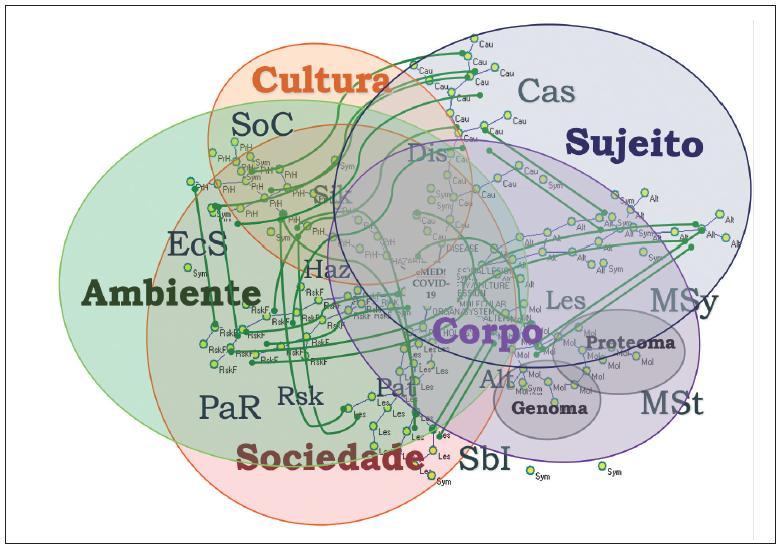 Rede de redes e acoplamento estrutural da HPG!Covid-19.
