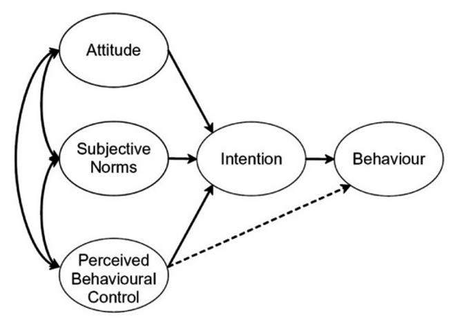 The Theory of Planned Behavior ( 							Ajzen, 1991)