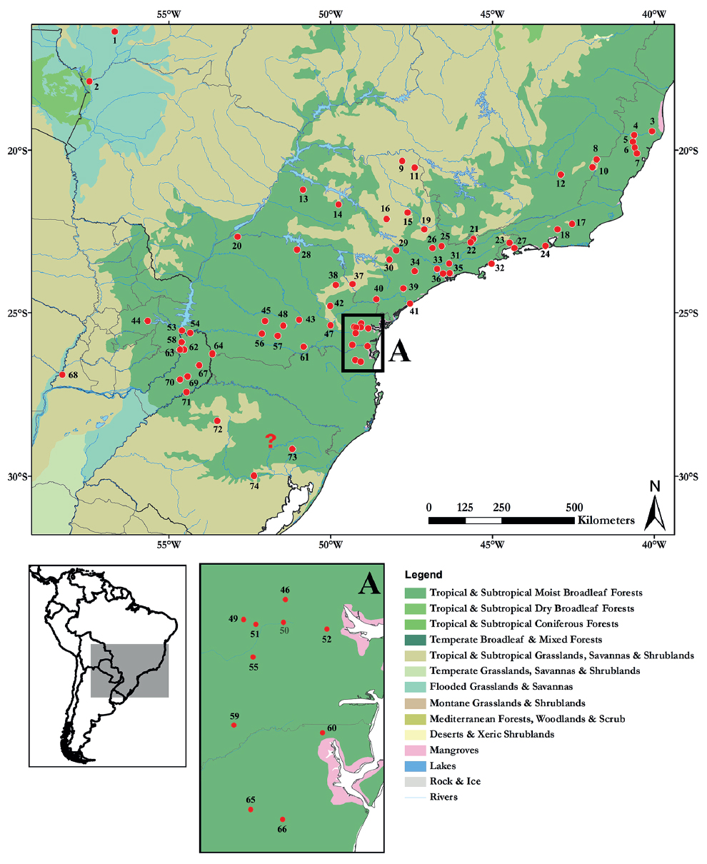 "Geographic distribution of the specimens of L. guttulus studied. Numbers correspond to collection localities listed in the gazetteer (see Appendix II) and the question mark refers to the type locality, which does not have a precise location [Hensel (1872) only cited ""Rio Grande do Sul"" as the type locality]. For color figure, see online version."