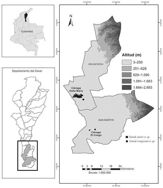 Localización del área de estudio y distribución de Tumak amari  sp. nov. y Tumak congorum  sp. nov.