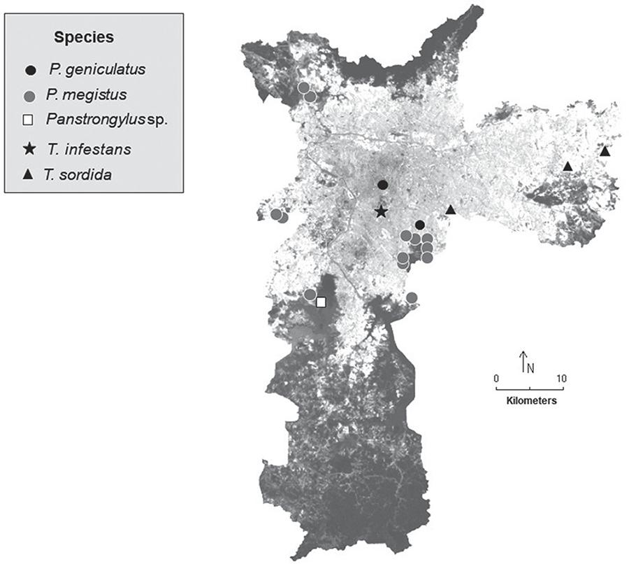 Occurrences of triatomines in the city of Sao Paulo from 1982 to 2017 recorded by Labfauna and LESP