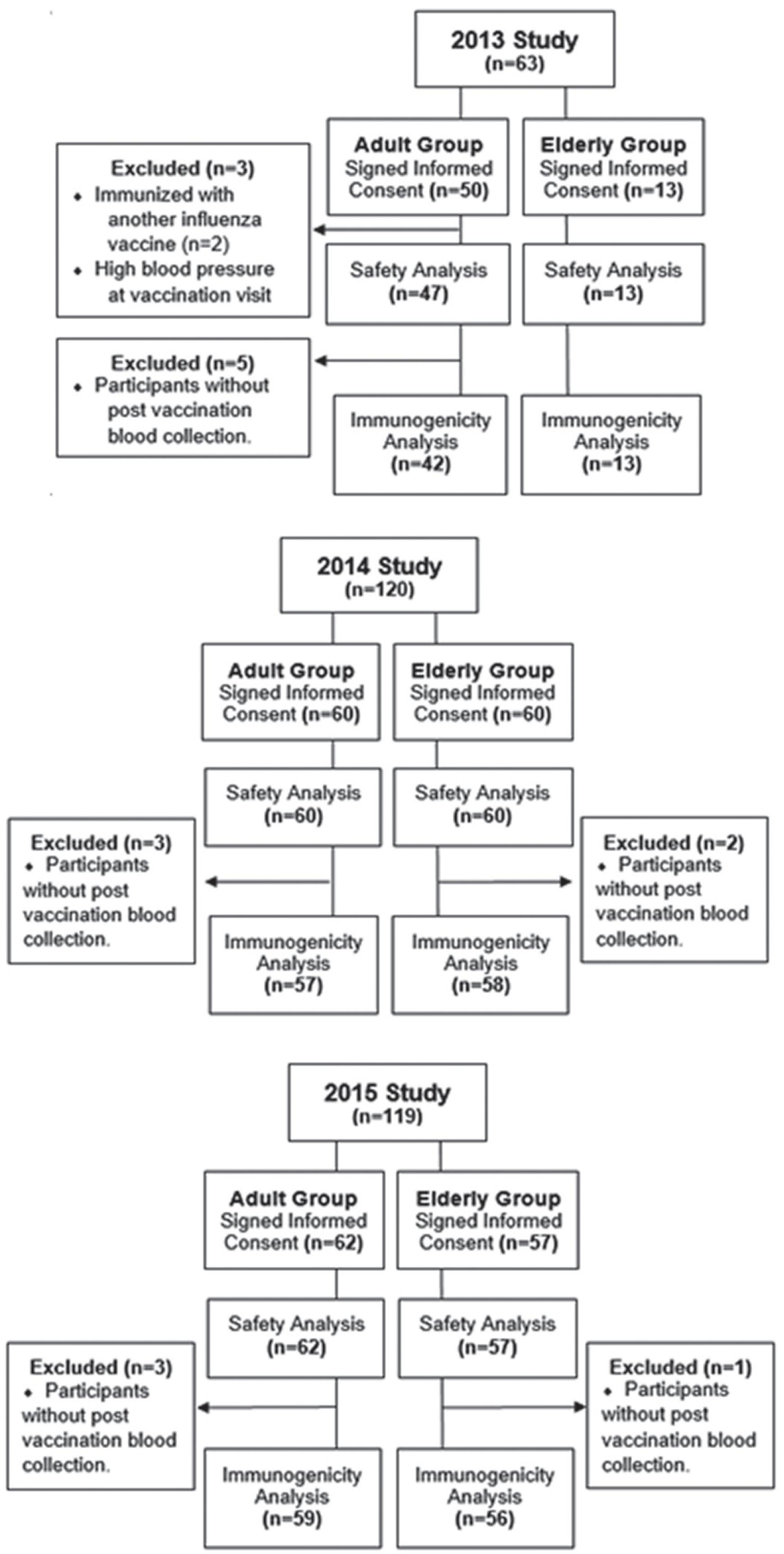 Flowchart with the number of participants included and analyzed by the study endpoints, year and age group