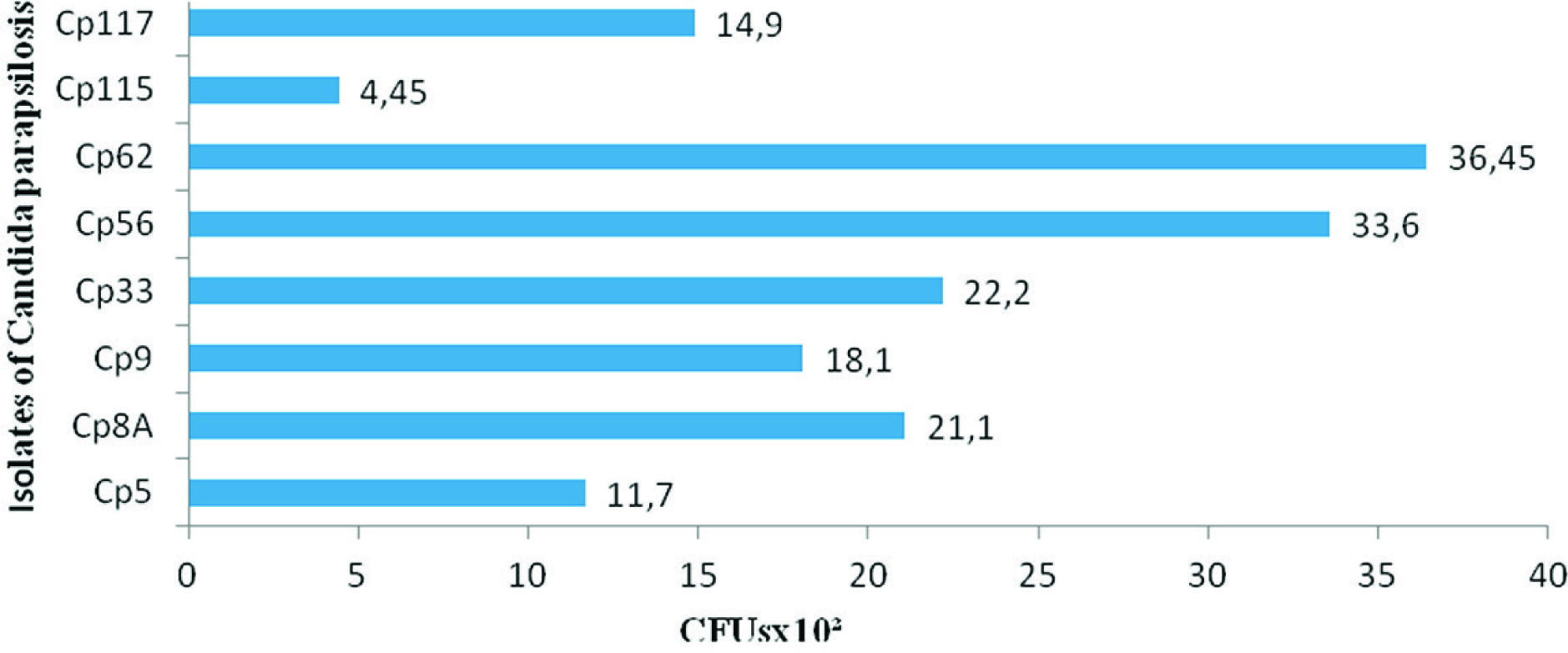 Distribution of the number of cells per CFUs x 102 in the formation of biofilm isolates of C. parapsilosis