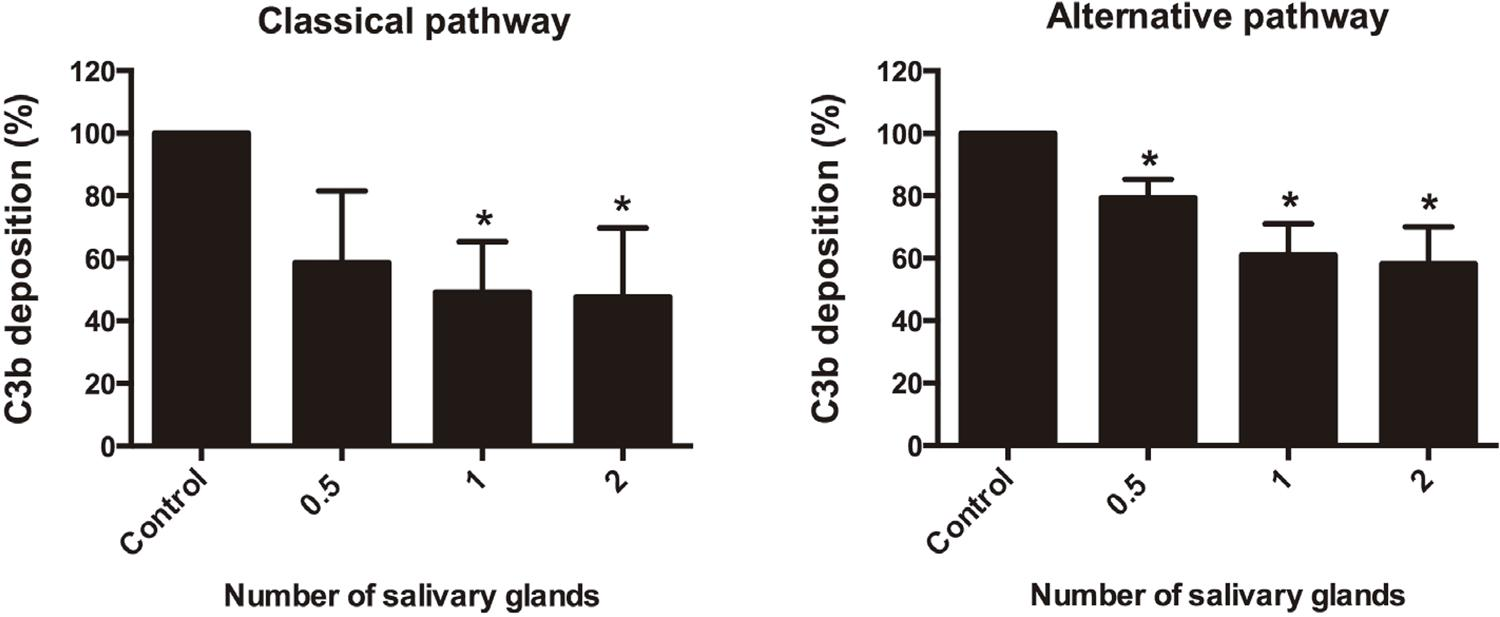 Effect of P. megistus salivary glands extracts (SGE) on the classical and the alternative pathways-mediated C3b deposition. Results are expressed as the mean percentage of C3b deposition + SD. Statistical analyses were performed using ANOVA followed by the Tukey test. Differences were considered significant when p < 0.05 (*).